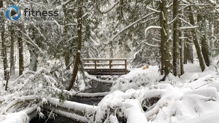 Bridge Over Creek in Snowy Forest (30 Minutes)