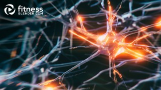 Intro to Neuroplasticity and How to Take Advantage of It (Through Exercise)